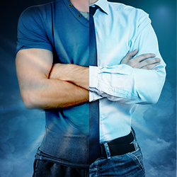 Differences between VIP and Standard Players